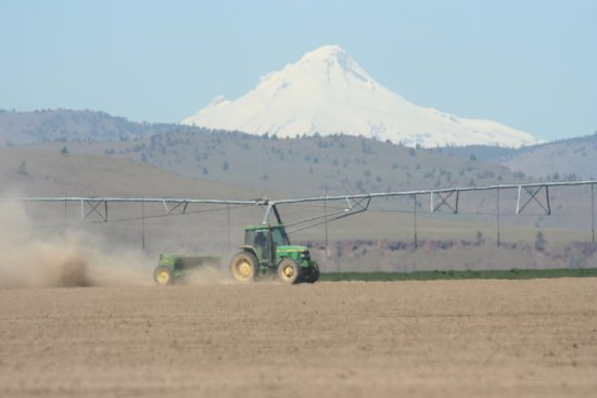 Madras, OR: Planting spring barley with Mutton Mountains and Mt. Hood in background