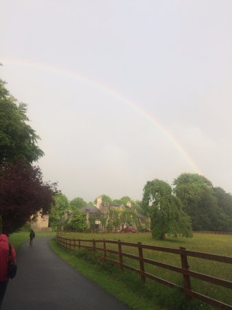 Newpark House: Rainbow