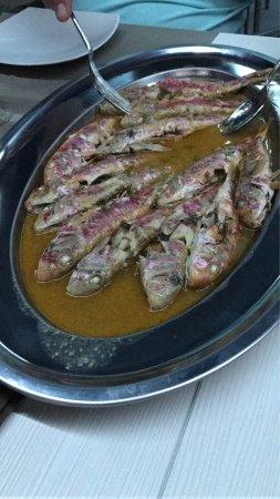 Cilento Dreams Restaurant