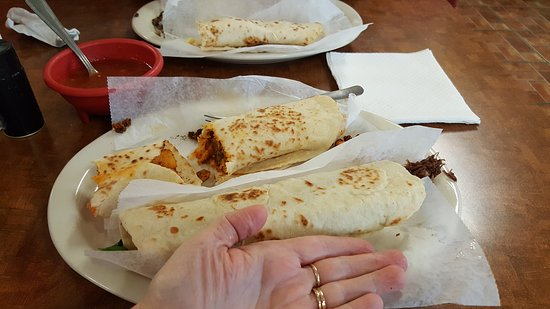 Freeport, TX: Huge and authentic tacos! So delicious!