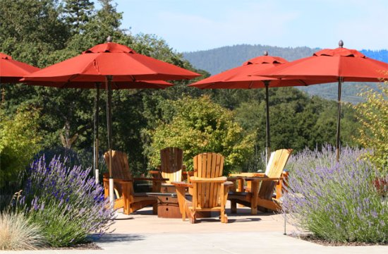 Healdsburg, CA: Our patio is ready for your picnic.