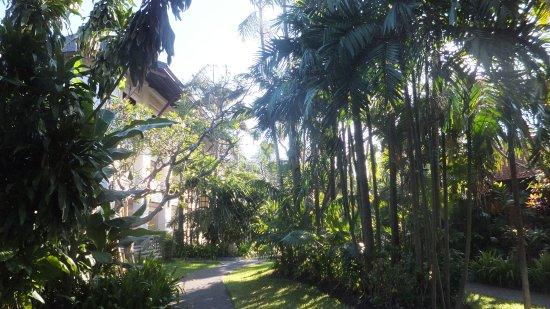 Beautiful resort set in lovely gardens