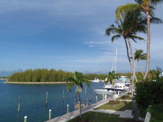 Treasure Cay Beach, Marina & Golf Resort: Part of the marina and Clipper Cay