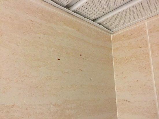 uraltes mückenblut im bad an der wand - nie gereinigt! - picture, Wohnideen design