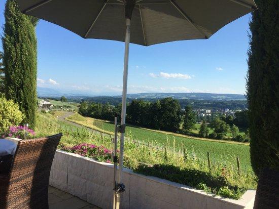 Widen, Switzerland: Blick von unserem Tisch in die innerschweizer Berge