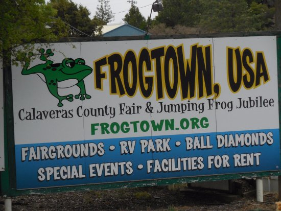 Angels Camp, CA: Frogtown