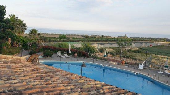 Fiumefreddo di Sicilia, Włochy: 20170530_191212_large.jpg