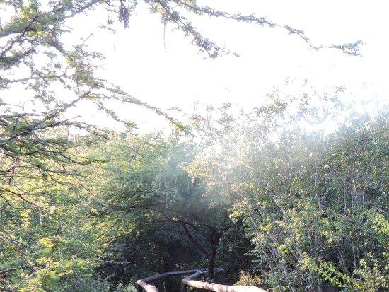 Camp Shonga ภาพถ่าย