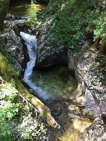 Srednja vas v Bohinju, Slovenia: photo7.jpg