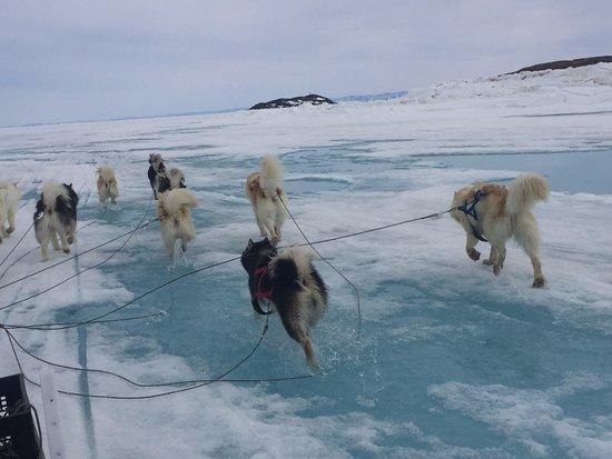 Iqaluit, Canada: Yeah!