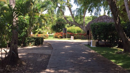 Bavaro Princess All Suites Resort, Spa & Casino: photo3.jpg