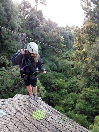 Rotorua Canopy Tours: The tallest, longest zipline