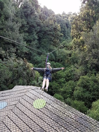 Rotorua Canopy Tours: amazing views
