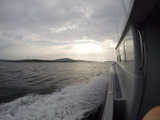 Renvyle, Ireland: Boat Diving