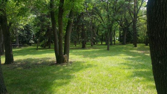 Wascana Centre Park Picture