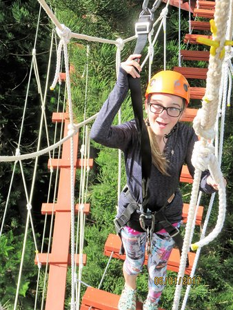 Just Live! Zipline Tours: This canopy bridge was my granddaughter's favorite!