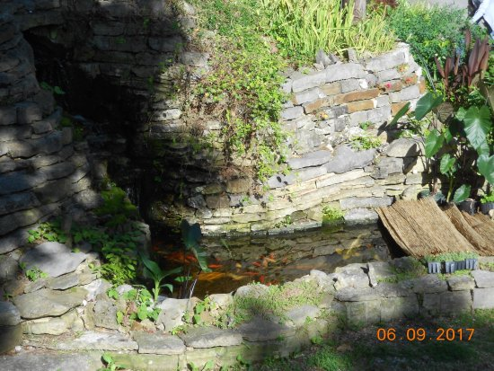 The Benton Place Inn: waterfall and gold fish pond next to parking lot