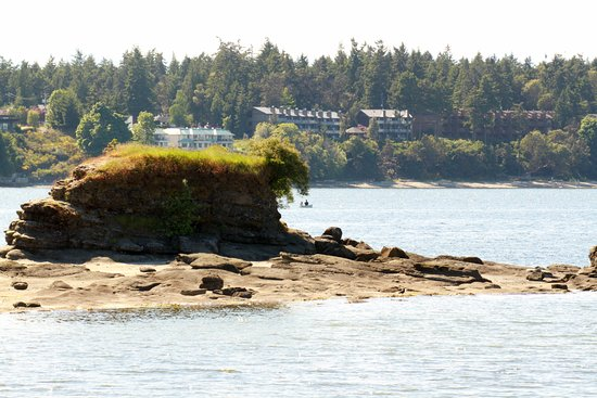 Nanoose Bay, Canada: Just Off The Beach At Pacific Shores Resort