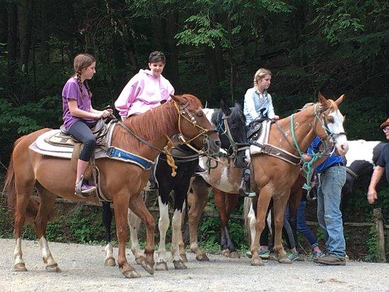 Smoky Mountain Riding Stables: photo0.jpg