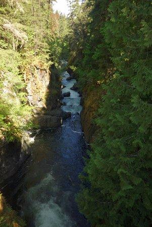 Errington, Kanada: Gorge Below Englishman River Falls