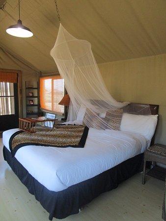 Vision Quest Safari Bed U0026 Breakfast: Our Bungalow #8 Leopardu0027s Lair