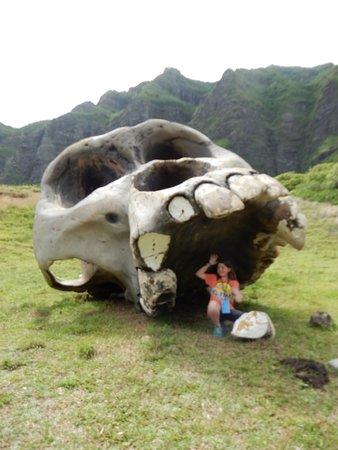 Kaneohe, Hawái: Kong Skull Island