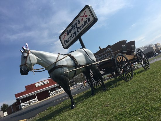 Melbourne, AR: Bailey's Country Cooking