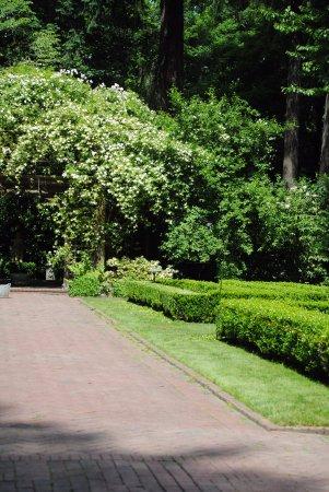 Lakewood, WA: The bridal walk.