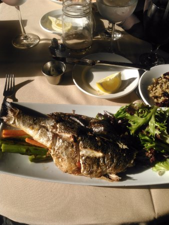 Tafton, Pensilvania: Sea Bass with Salad, Carrots & Asparagus and rice with cranberries.