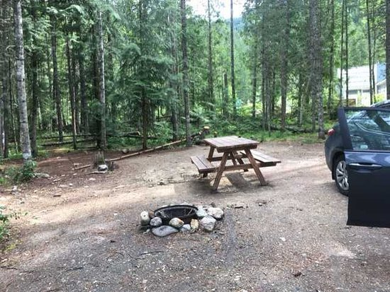 Crazy Creek Resort and Hot Pools : Campsite #34 - plenty of room for a vehicle and tent.