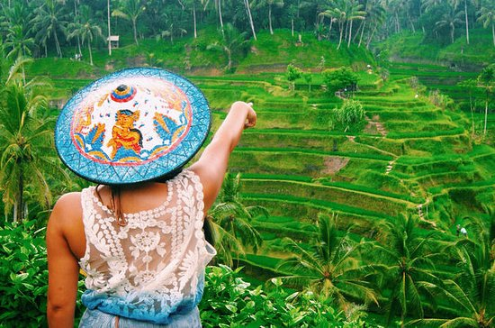 Tour privado de Ubud