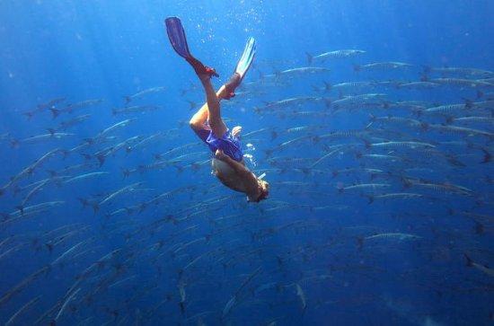 3-daagse snorkel Live-aboard in Takua ...