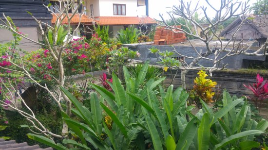 Puri Bayu Guest House: The view the other way (and from the other room next door)