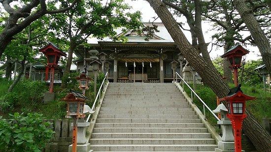 Tsugaru-billede