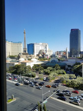 Amazing Accommodations on the Strip