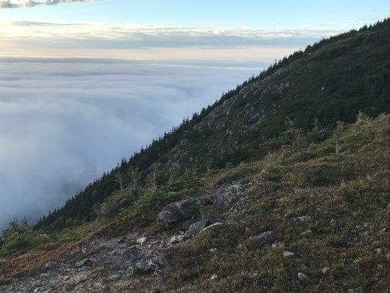 Skyline Trail Foto