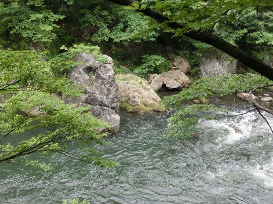Midori, Japan: 遊歩道から眺めるゴリラ岩