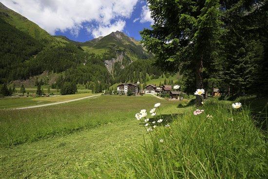 卡斯大格洛克納山照片