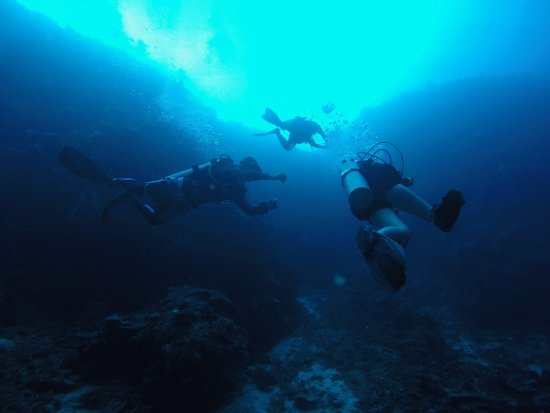 North Sulawesi, Indonésia: Diving a wall