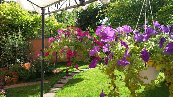 B&B At Alice's Garden: Il giardino di Alice🌺🌼🌸❤️