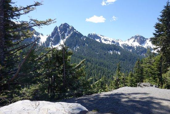Mount Rainier Day Trip Picture Of Tours Northwest