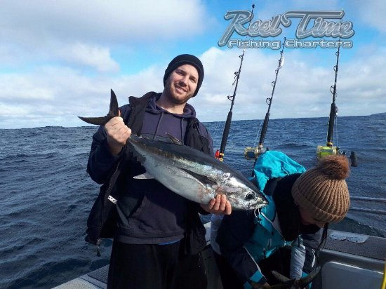 Tuna Fishing Victoria, Bluefin Tuna Portland - Picture of Reel Time