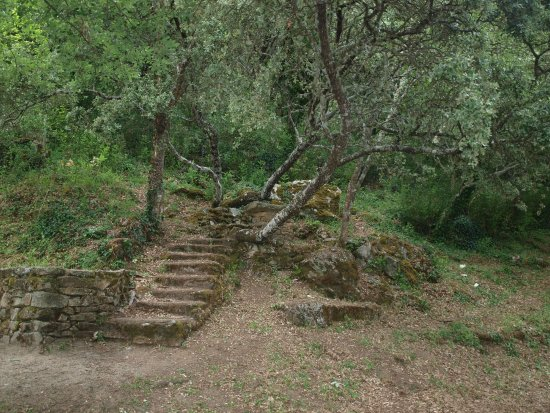 Aldeadávila de la Ribera, España: Acceso a una mesa para comer