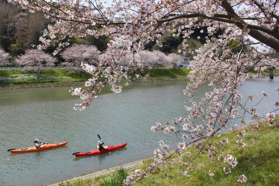 Kamo-gun, Japan: SURFACEサクラツアー(4月前半)