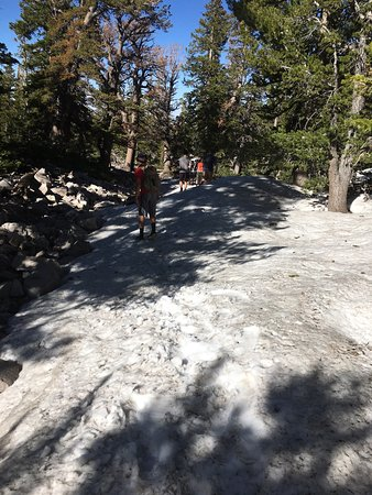 Great Basin National Park, NV: Snow covered area, which was how we lost the trail