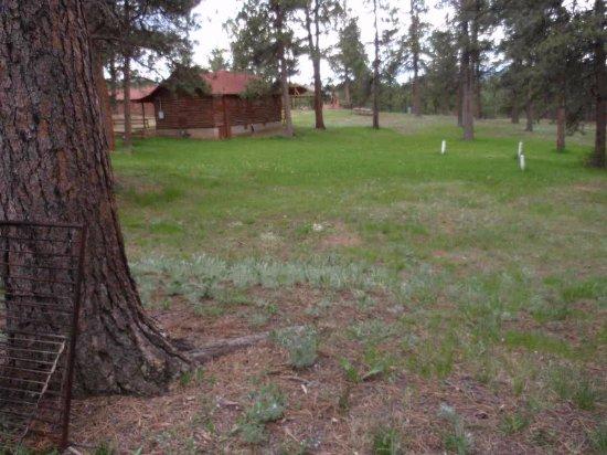 Triple B Ranch: Cabins