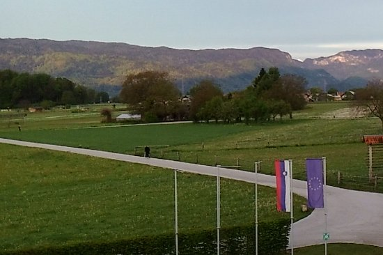 Begunje na Gorenjskem, Slovénie : 清晨 鹿群出現在飯店前的野地上