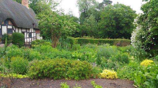 Anne Hathaway's Cottage & Gardens: P_20170606_105832_large.jpg