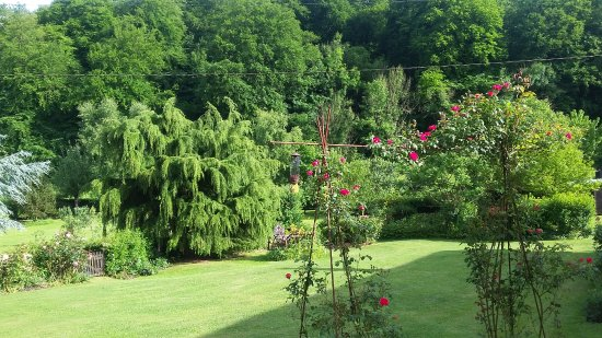 Seine-Maritime, France : Garden from patio
