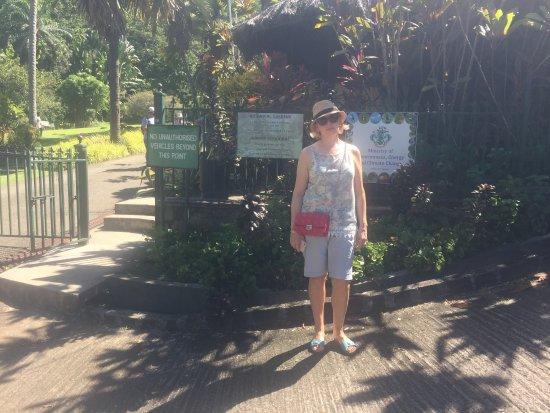 Seychelles National Botanical Gardens: В Ботаническом саду.